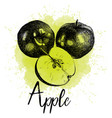 an apple in hand drawn vector image