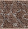 leopard or jaguar seamless pattern modern animal vector image