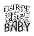 carpe diem baby vector image