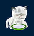 dreaming cat and plate with milk icon symbol vector image