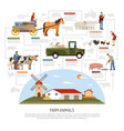 farm animals flowchart concept vector image vector image