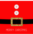 Santa Claus Coat with fur buttons Gold glitter vector image vector image
