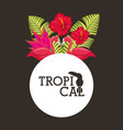 tropical flower leaves round label vector image
