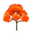 autumn stylized tree vector image