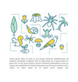 biodiversity concept linear vector image vector image