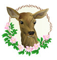 deer mother head in wooden frame with wild roses vector image