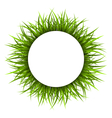 Frame with green grass Floral nature background vector image vector image