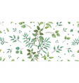 greenery pattern eucalyptus seamless wedding vector image vector image