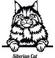 siberian cat - cat breed cat breed head isolated vector image vector image