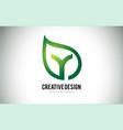 y leaf logo letter design with green leaf outline vector image vector image