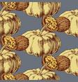 autumn harvest seamless pattern pumpkin vector image
