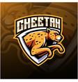 cheetah sport mascot logo design vector image vector image
