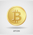 cryptocurrency business money bitcoin icon vector image