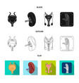 design of body and human sign set of body vector image