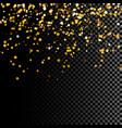 golden glitter vector image vector image