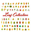 leaf collection set vector image