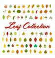 leaf collection set vector image
