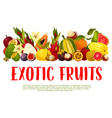 poster for tropical exotic fruits vector image vector image