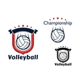 Volleyball game emblems with flying balls vector image vector image
