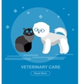 character design cat and dog vector image vector image