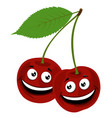 cherry of a funny pair of vector image vector image