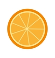 citrus fruit isolated icon design vector image