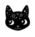 cute cartoon witchcraft decorated cat head vector image