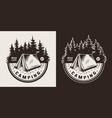 vintage summer camping emblem vector image