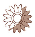 beautifull sunflower isolated icon vector image vector image