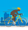 Bicycle Speed vector image vector image