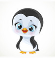 cute cartoon baby penguin isolated on a white vector image vector image