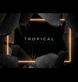 dark monochrome tropical design with exotic banana vector image vector image