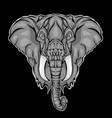 head elephant vector image vector image
