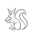 Little cute squirrel with huzelnut vector image vector image