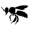 ordinary bee side view vector image vector image