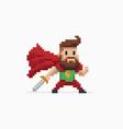 pixel art hero vector image