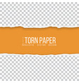 realistic torn paper border vector image
