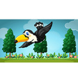 Toucan flying in the garden vector image
