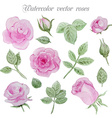 Watercolor roses elements set leaves and flowers vector image