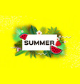 watermelon strawberry tropical summer day vector image vector image