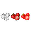 whole and slice strawberry engraving and vector image