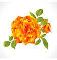 yellow rose with buds and leaves natural vector image vector image