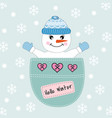 cute snowman sitting in a pocket vector image