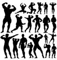 gym fitness vector image vector image