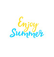 hand lettering enjoy summer fun quote vector image