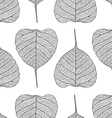 pipalleaf pattern vector image vector image