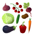 different vegetables carrot cucumber eggplant vector image