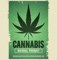 medical cannabis plant marijuana weed poster vector image vector image