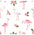 pink exotic flamingo birds tropical camelia vector image vector image