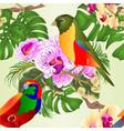 seamless texture tropical birds vector image vector image
